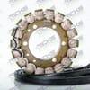 New OEM Style Triumph Stator 21_006