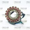 New Hot Shot Suzuki Stator 21_318H